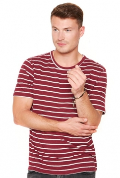 21110_the-hemp-line_hanf_bio-baumwolle_t-shirt_gestreift_bordeaux